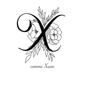 affiche lettre X