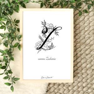 affiche lettre Z