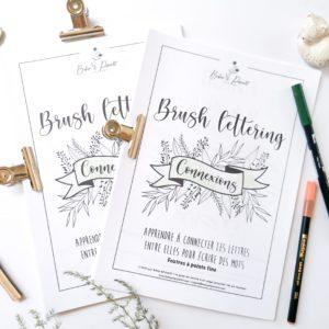 Les connexions – brush lettering
